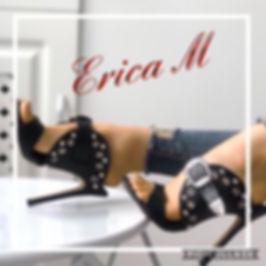 Ask Erica logo.jpg