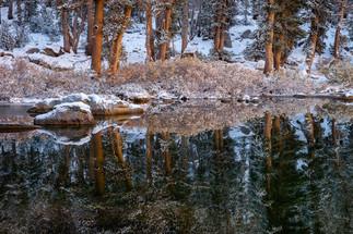 Morning Reflections on Flower Lake