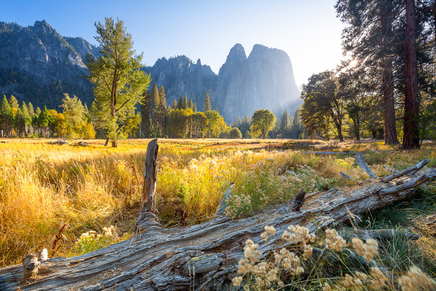 Autumn Light on Yosemite Valley I