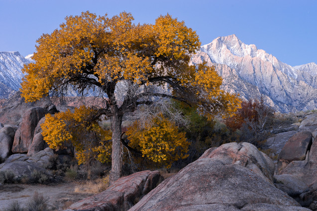 Colors of Alabama Hills