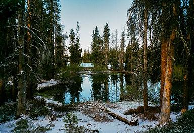 Yosemite 2021 - Cy's Roll - Fuji FIlm -1