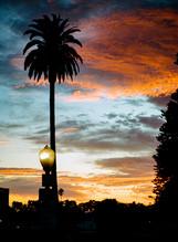 Ventura Sunsets