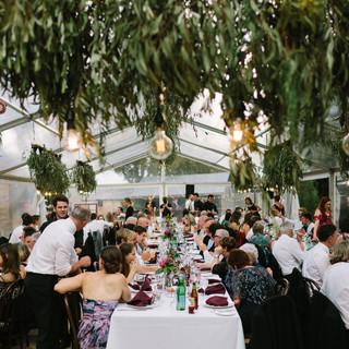 Dave-Pascoe-weddings-SA-631.jpg