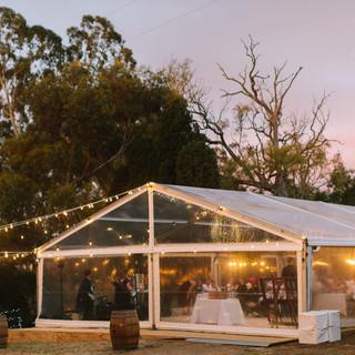 Dave-Pascoe-weddings-SA-772.jpg