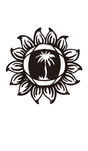 stunna logo_edited.png