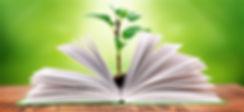 Житомир курсы иностранных языков, Житомир курсы красоты и здоровья, Житомир курсы школьные предметы, Житомир курсы 1С, Житомир курсы бухучет, Житомир курсы ПК, Житомир репетитор, Житомир репетиторство, Житомир учебный центр
