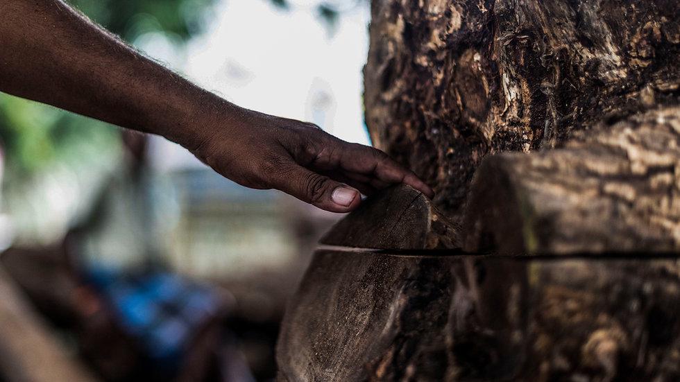 Wood Photos for Aksha-42.jpg