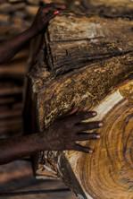 Wood Photos for Aksha-33.jpg
