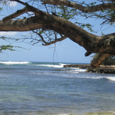 """""""Ironically, just around the corner, inner Pua'ena Point is the perfect beginner's surf spot and a place where many tourists, including Seana, learned to surf within its protected bay."""""""