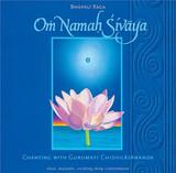 Om Namah Shivaya - Chanting with Gurumayi
