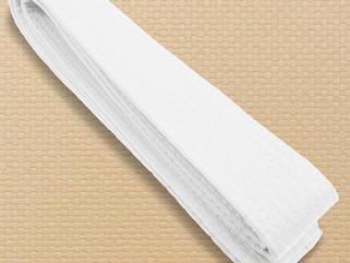 Harleen grades to white belt in Te Jutsu