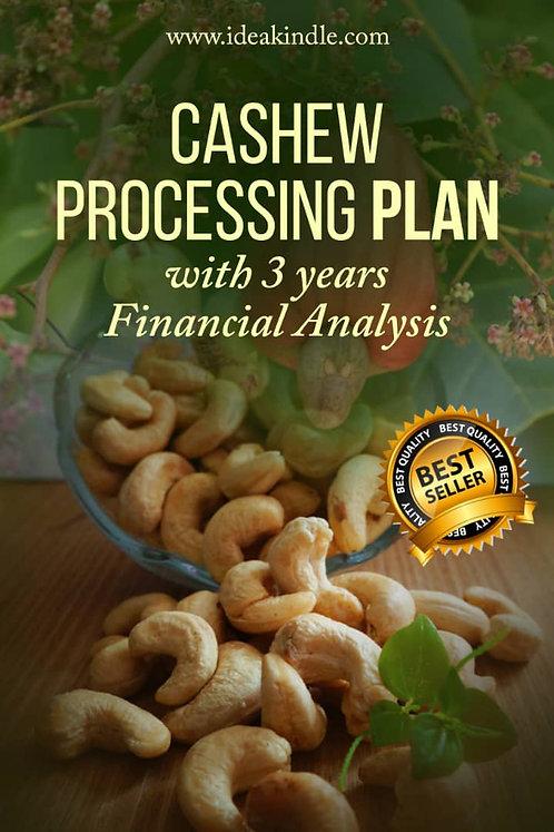 Cashew Processing Business Plan
