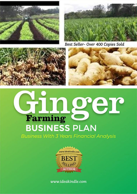 Ginger Farming Business Plan