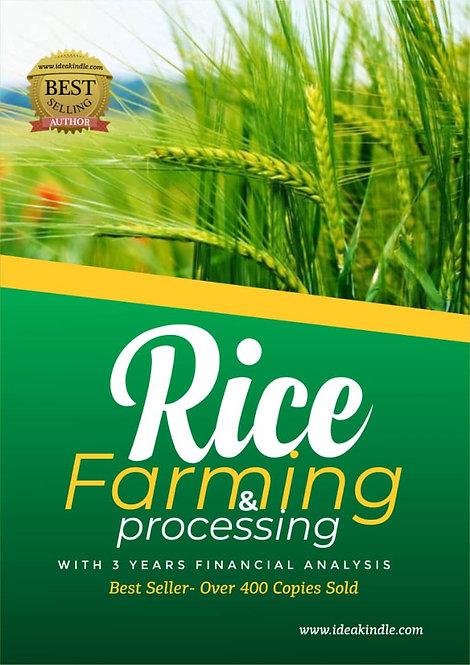 Rice Farming & Processing Business Plan