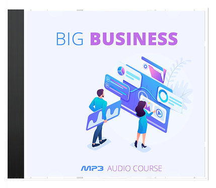 Big Business Training Program Audio Pack