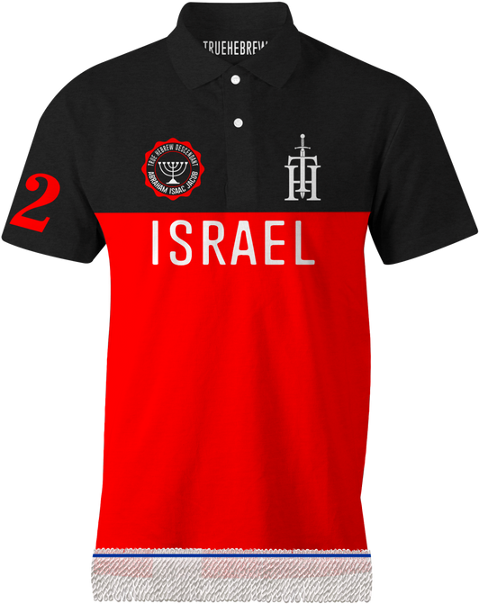 ISRAEL POLO 3.png