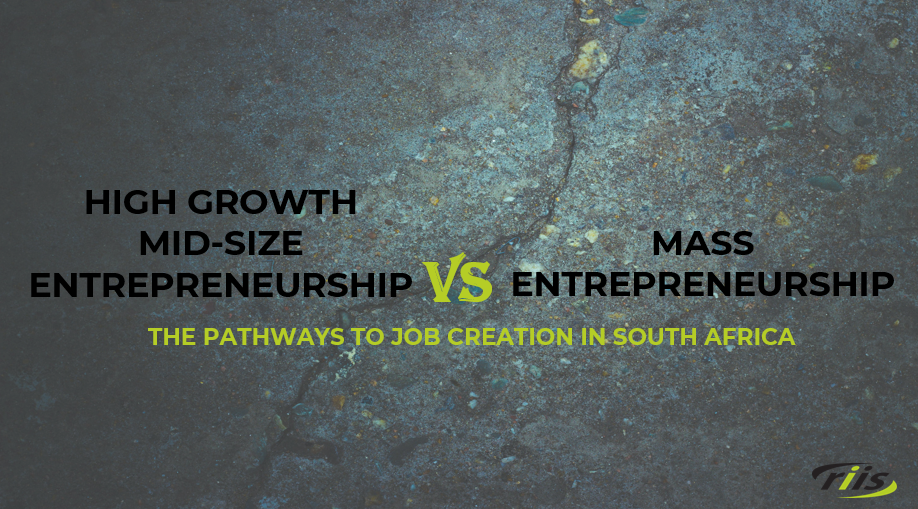 Pathways to Job Creation in South Africa