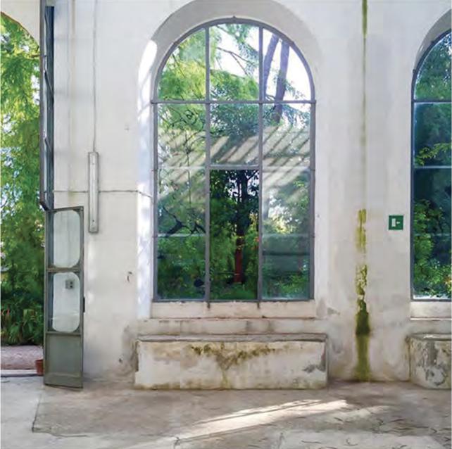 Orto Botanico, Firenze