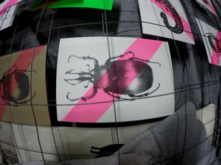 Käfer Siebdruck