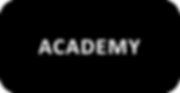 ACADEMY BUTTON.png