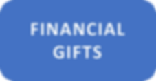 FINANCIAL GIFTS BUTTON.png