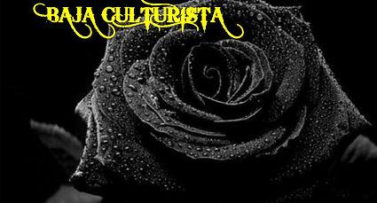 BC Black Rose.jpg