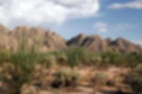 Sonora_Desert_2007.jpg