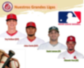 MLB Aguilas.jpg