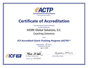 MORE Global Solutions_ S.C. Certificate.