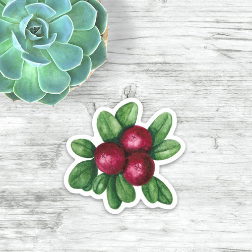 """Cranberries"" sticker by Angela Toci"