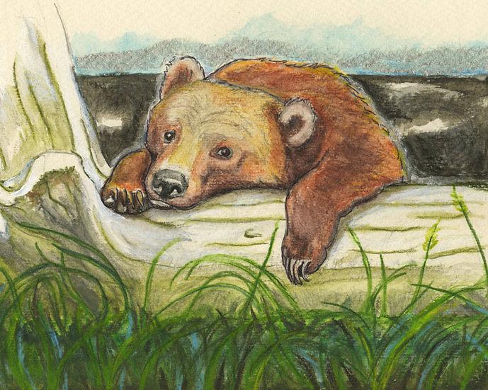 """Sleepy Bear"" by Jennifer Culbertson"