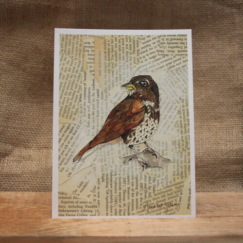 """""""Fox Sparrow"""" by Amarie Young"""