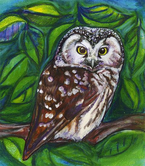 """Owl"" by Jennifer Culbertson"