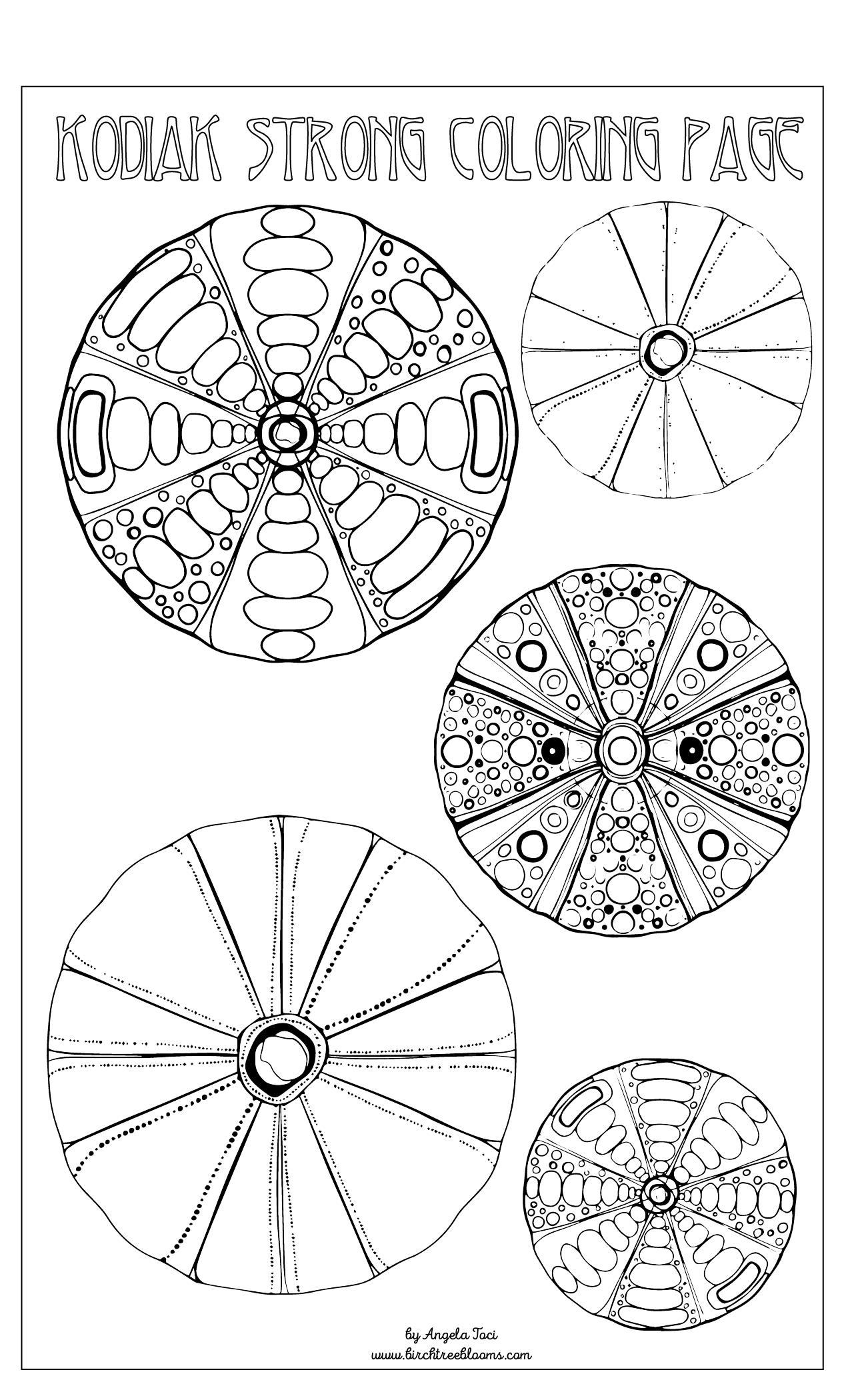Angela Toci Sea Urchins