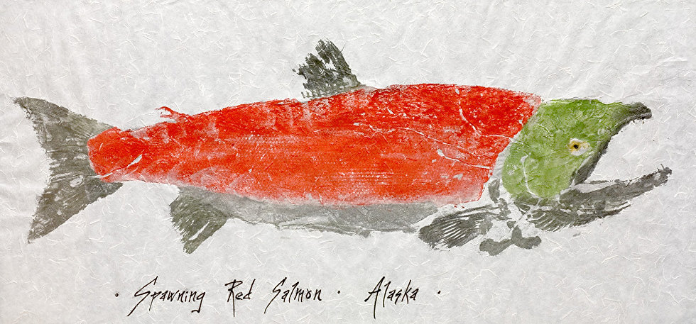 Spawning Red Salmon by Ink Goes Wild