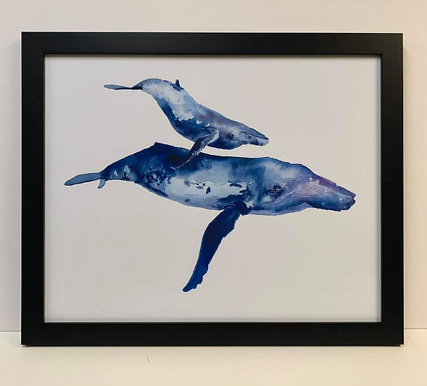 "Framed ""Mother & Calf Humpback"" print by Kelly Clause"