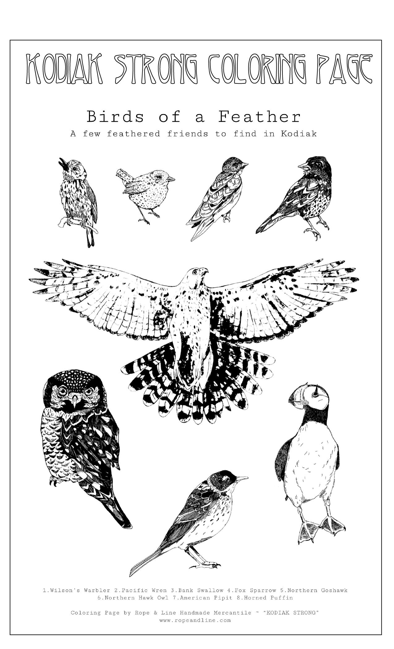 Amarie Young Birds Of Kodiak