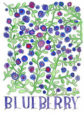 """Blueberry"" by Natasha Zahn Pristas"