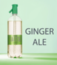 Ginger_fond.png
