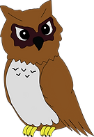 THIS IS OWL.png