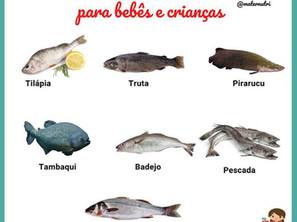 Melhores Peixes para Bebês e Crianças
