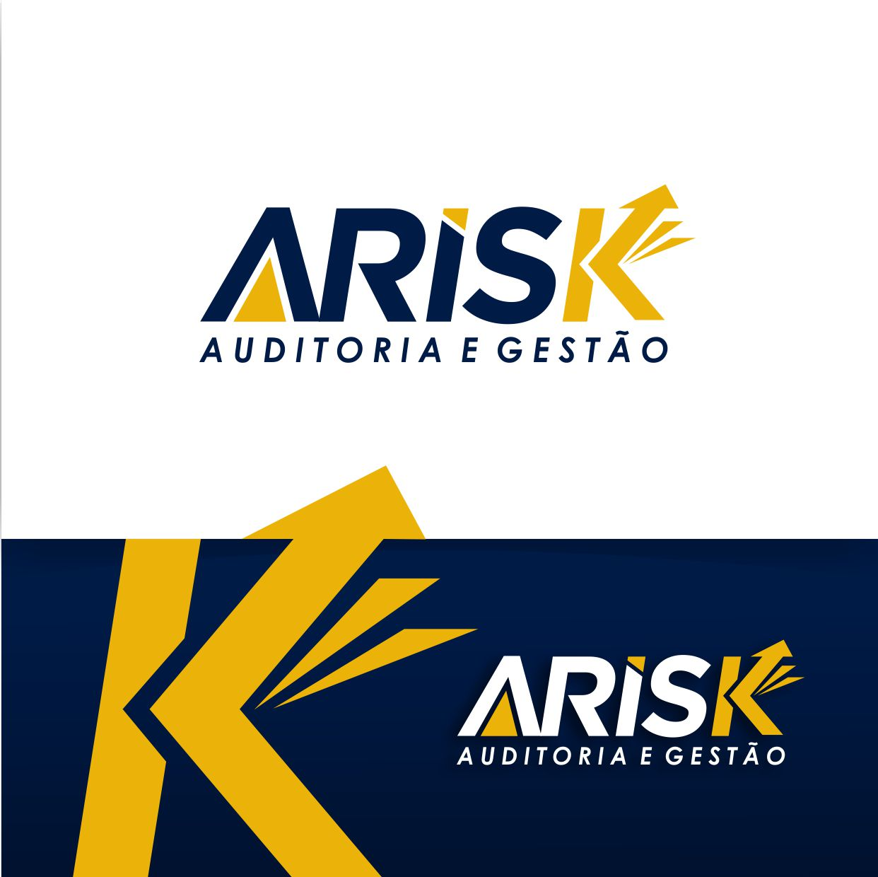 Logo ARISK9
