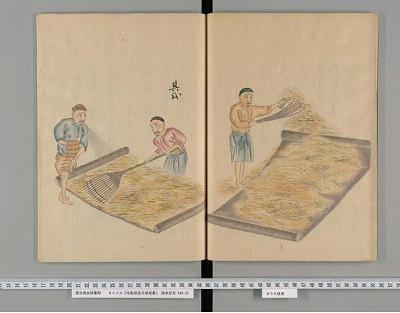 歴史書から。いつ頃、日本でフェルトが作られたの?1
