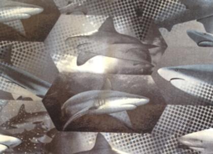 Heavy Metal Sharks