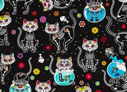 X-Ray Cats