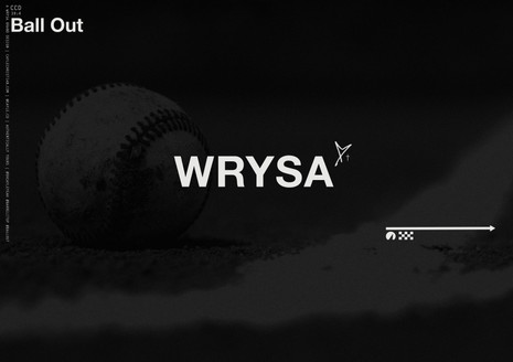 WISCONSIN RAPIDS YOUTH SPORTS ASSOC.
