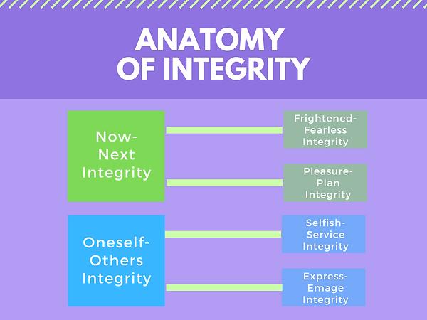 0Anatomyofintegrity.png