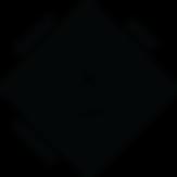 WSL Experiences Logo Black-1.png