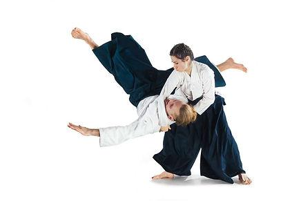 aikido fight.jpg