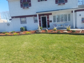 North Babylon NY, Overgrown Garden Bed After